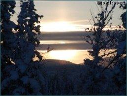 Abend im winterlichen Yukon