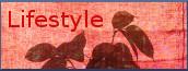 Wirtschaftswetter-Lifestyle, Schwerpunkt Gegenwart, Link Werbeseite
