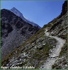 Pfad Schweizer Berge