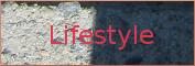 Wirtschaftswetter-Lifestyle, Schwerpunkt Stegreif, Link Werbeseite