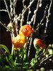 Ostern at home 3