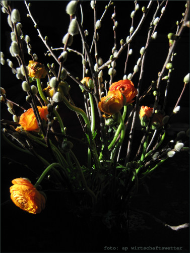 Ostern at home 5