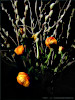 Ostern at home 6